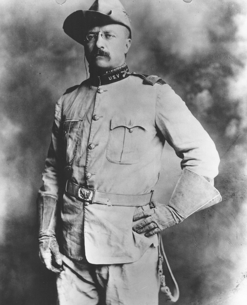 the early political and military career of theodore roosevelt Roosevelt, theodore  theodore roosevelt in the early 1900's,  later roosevelt continued his career as an assistant secretary of the navy in washington.